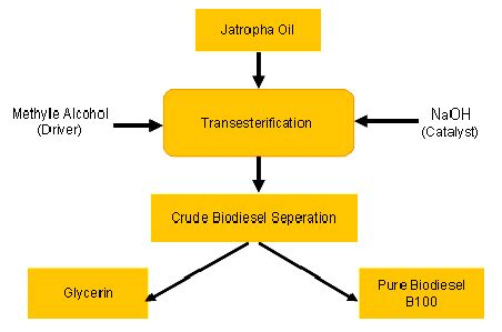 Biofuels research papers - The Last Degree